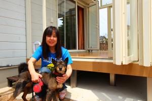 犬と暮らす庭④画像