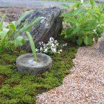 杉苔のある癒しのお庭