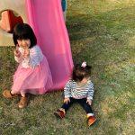 子供が喜ぶお庭造り