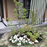 植栽が目を引くお庭