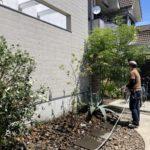 目隠しフェンスと植栽工事の様子