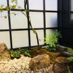 涼を感じる坪庭空間
