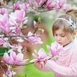 春が待ち遠しい♥木蓮の花