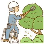 剪定で植木の健康管理